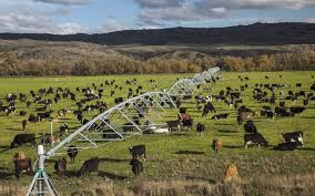 Image result for pictures irrigators new zealand