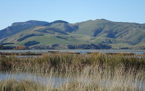 A view of Lake Ellesmere